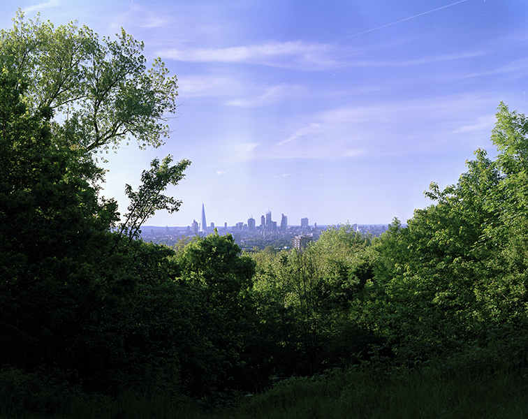 One-Tree-Hill-01