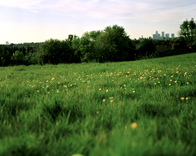 Blythe Hill 03